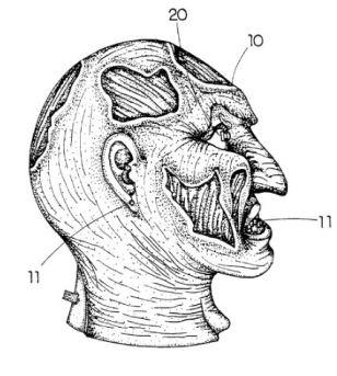 h7-flashing-mask